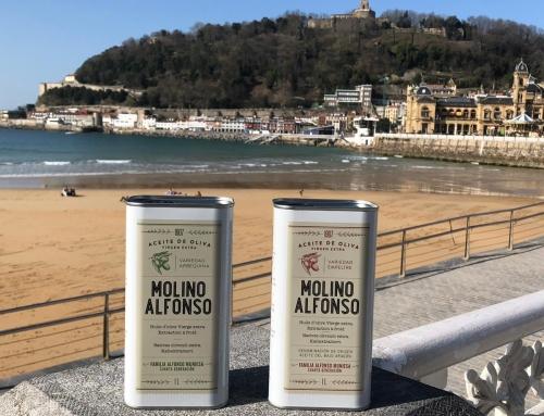 Visita San Sebastián