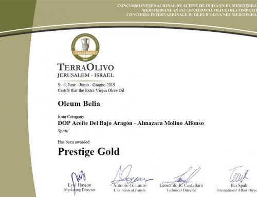 Premios TerraOlivo 2019